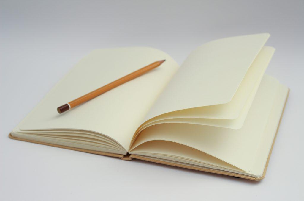 Aufgeschlagenes leeres blanko Notizbuch mit einem Stift darauf liegend